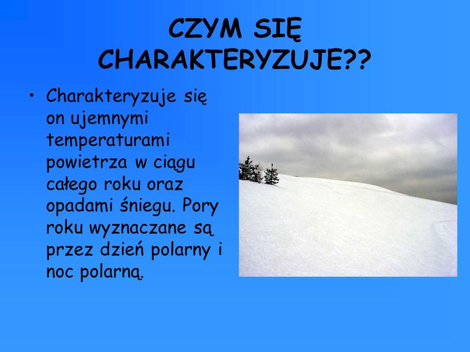 CZYM SIĘ CHARAKTERYZUJE?? Charakteryzuje się on ujemnymi temperaturami powietrza w ciągu całego roku oraz opadami śniegu. Pory roku wyznaczane są prze