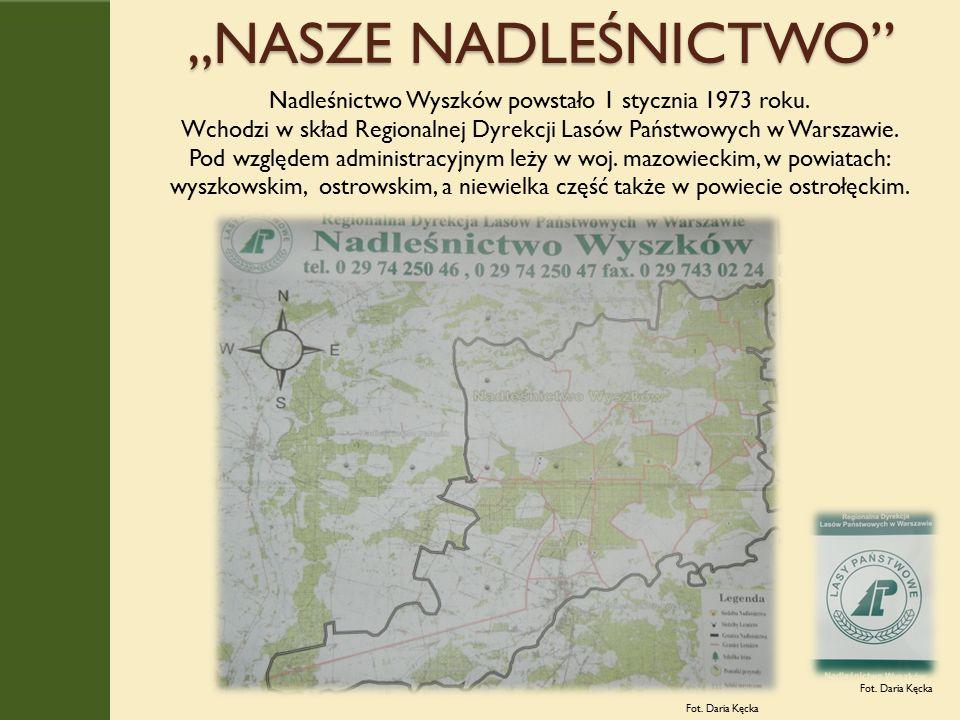"""""""NASZE NADLEŚNICTWO Fot. Daria Kęcka Nadleśnictwo Wyszków powstało 1 stycznia 1973 roku."""