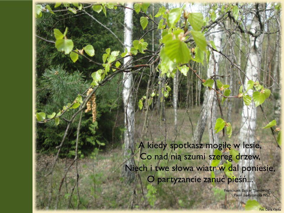 A kiedy spotkasz mogiłę w lesie, Co nad nią szumi szereg drzew, Niech i twe słowa wiatr w dal poniesie, O partyzancie zanuć pieśń...