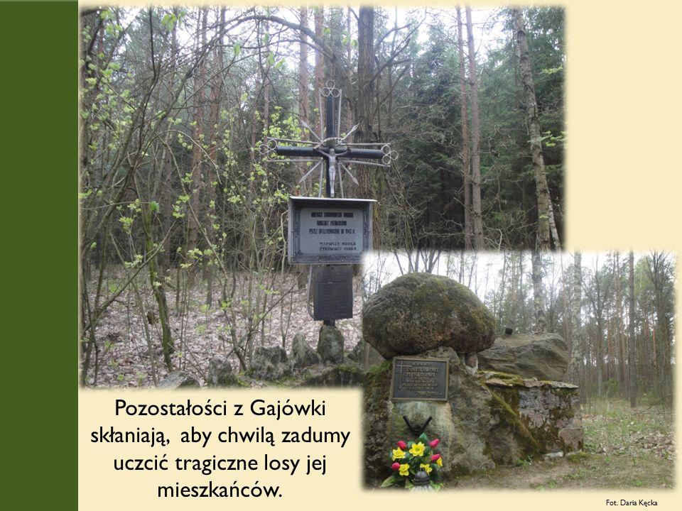 Pozostałości z Gajówki skłaniają, aby chwilą zadumy uczcić tragiczne losy jej mieszkańców.