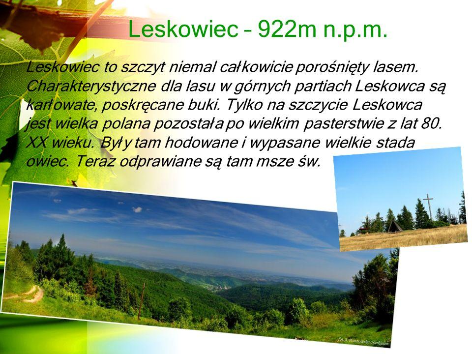 Leskowiec – 922m n.p.m.Leskowiec to szczyt niemal całkowicie porośnięty lasem.