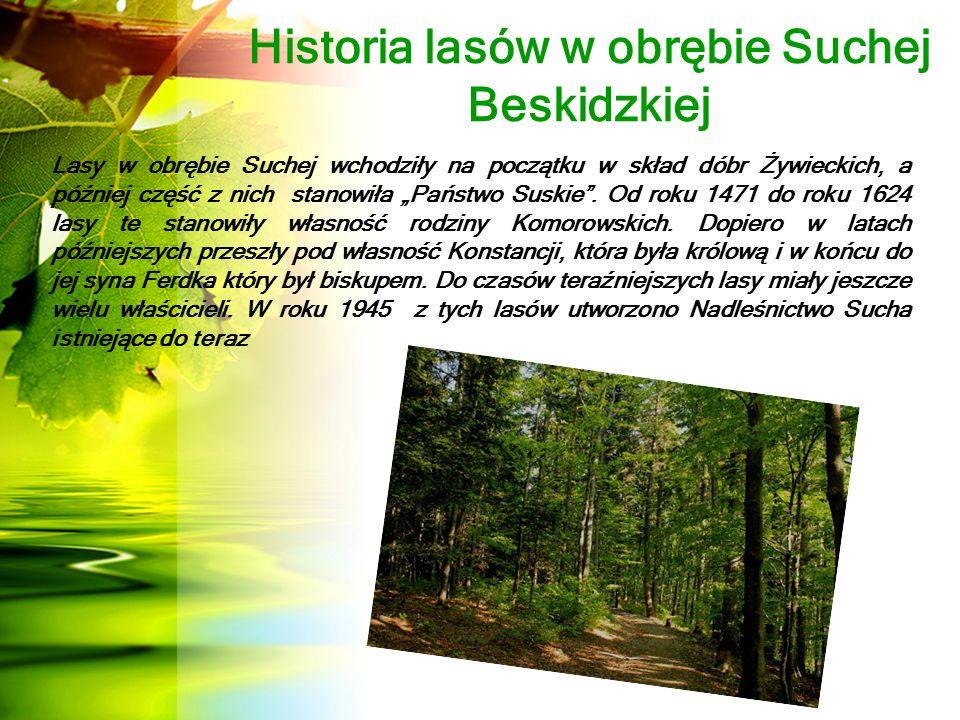 Warunki geograficzno - przyrodnicze  Lasy niepaństwowe, nad którymi nadzór został powierzony Nadleśnictwu Sucha, podzielone są na 4 obwody nadzorcze.