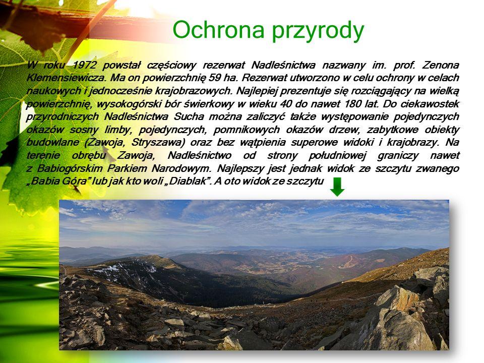 Ochrona przyrody W roku 1972 powstał częściowy rezerwat Nadleśnictwa nazwany im.