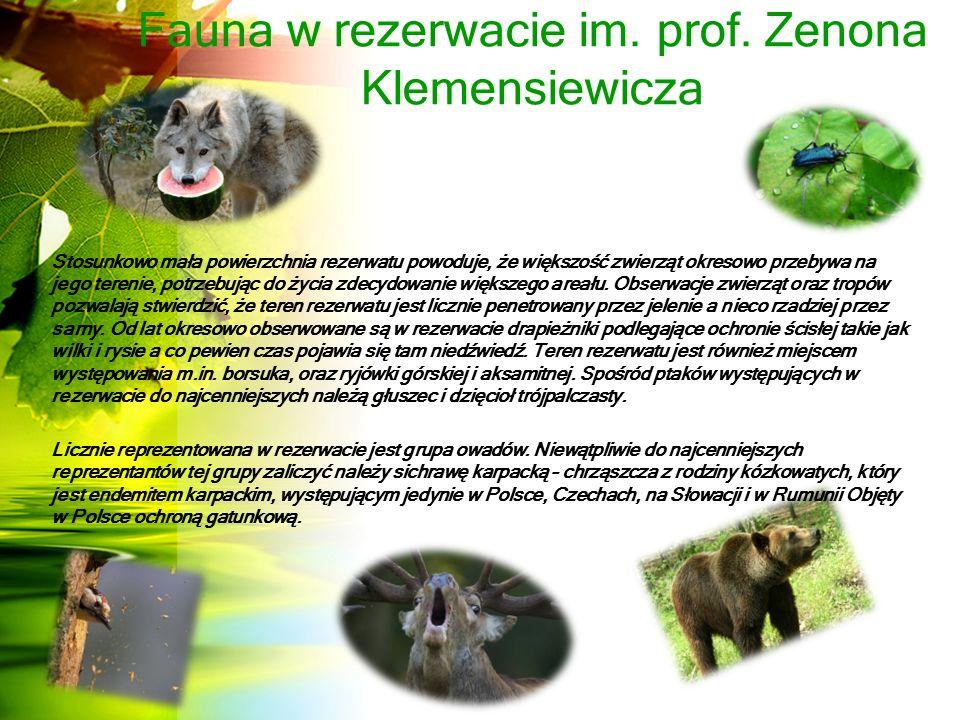 Fauna w rezerwacie im.prof.