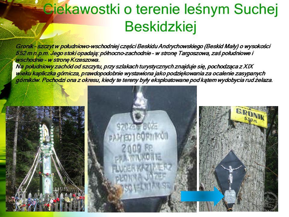 Ciekawostki o terenie leśnym Suchej Beskidzkiej Gronik – szczyt w południowo-wschodniej części Beskidu Andrychowskiego (Beskid Mały) o wysokości 552 m n.p.m.