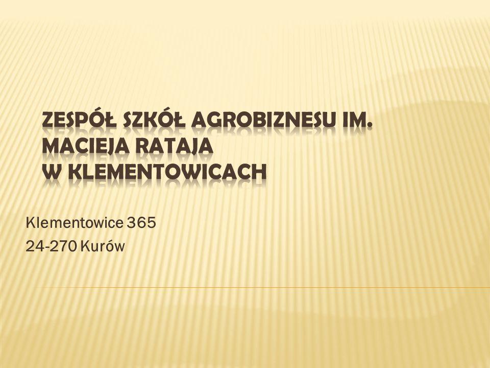 Klementowice 365 24-270 Kurów