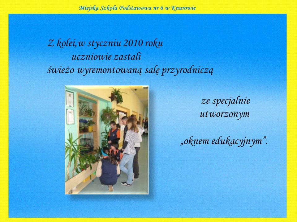 """Z kolei,w styczniu 2010 roku uczniowie zastali świeżo wyremontowaną salę przyrodniczą ze specjalnie utworzonym """"oknem edukacyjnym ."""