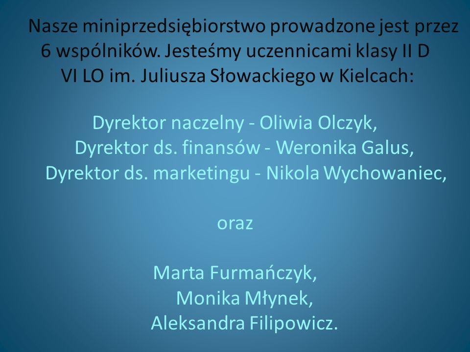 Nasze miniprzedsiębiorstwo prowadzone jest przez 6 wspólników.