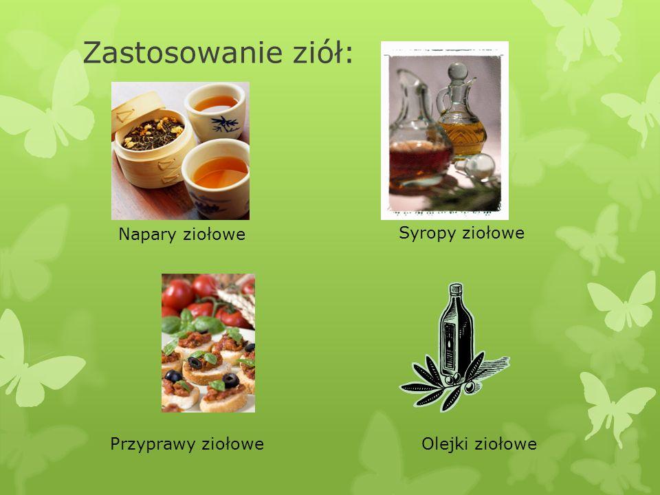 Napary ziołowe Syropy ziołowe Przyprawy ziołoweOlejki ziołowe Zastosowanie ziół: