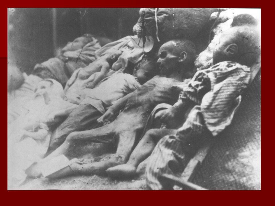 Ludność żydowska była pozbawiana wszelkich praw, majątków potem była wysiedlana do gett, z których wywożono ją do obozów koncentracyjnych i obozów zagłady.