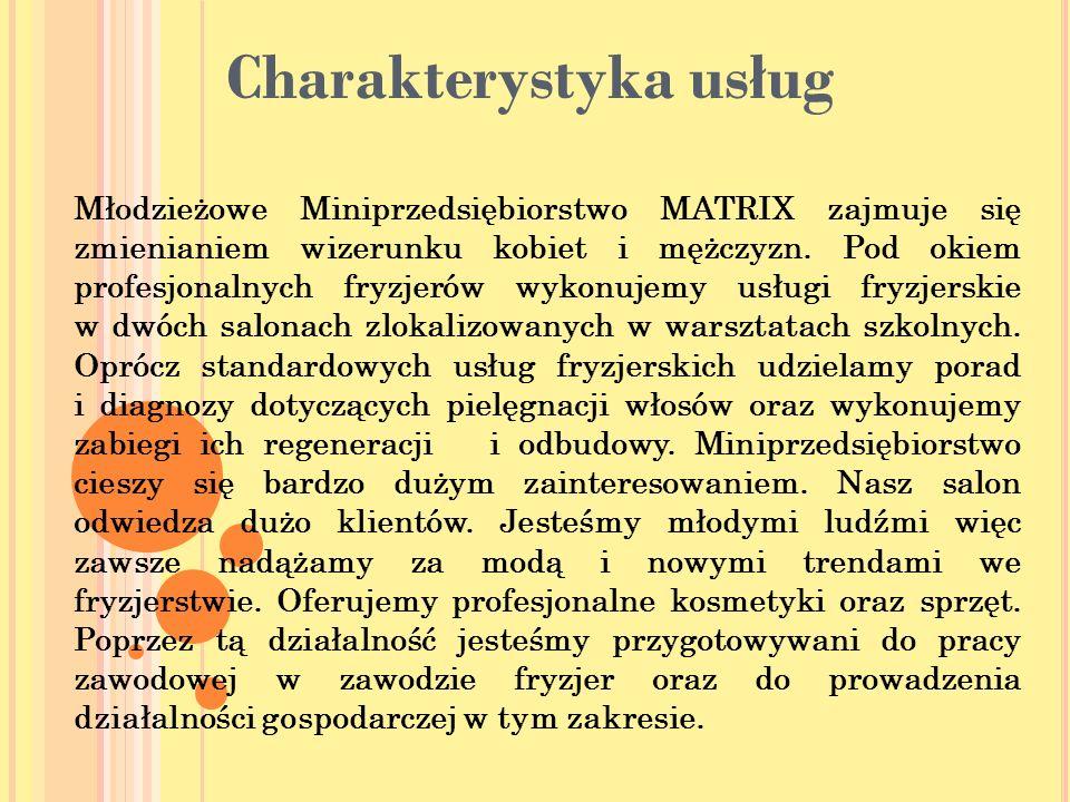 Charakterystyka usług Młodzieżowe Miniprzedsiębiorstwo MATRIX zajmuje się zmienianiem wizerunku kobiet i mężczyzn.