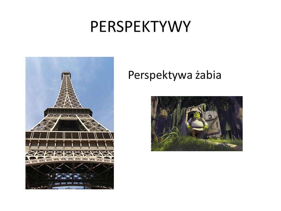 PERSPEKTYWY Perspektywa żabia