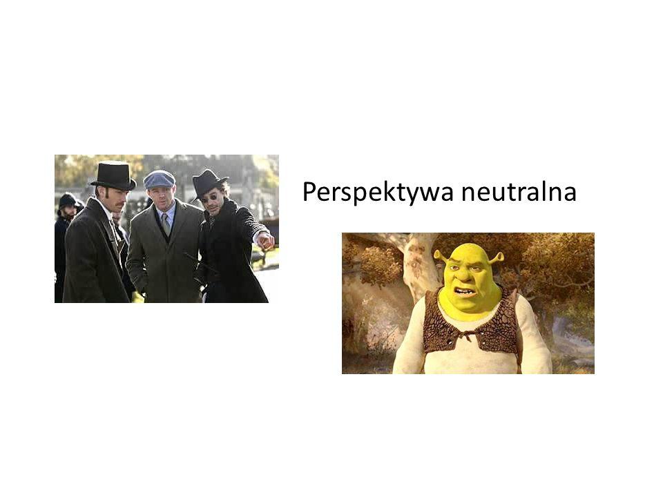 Perspektywa neutralna
