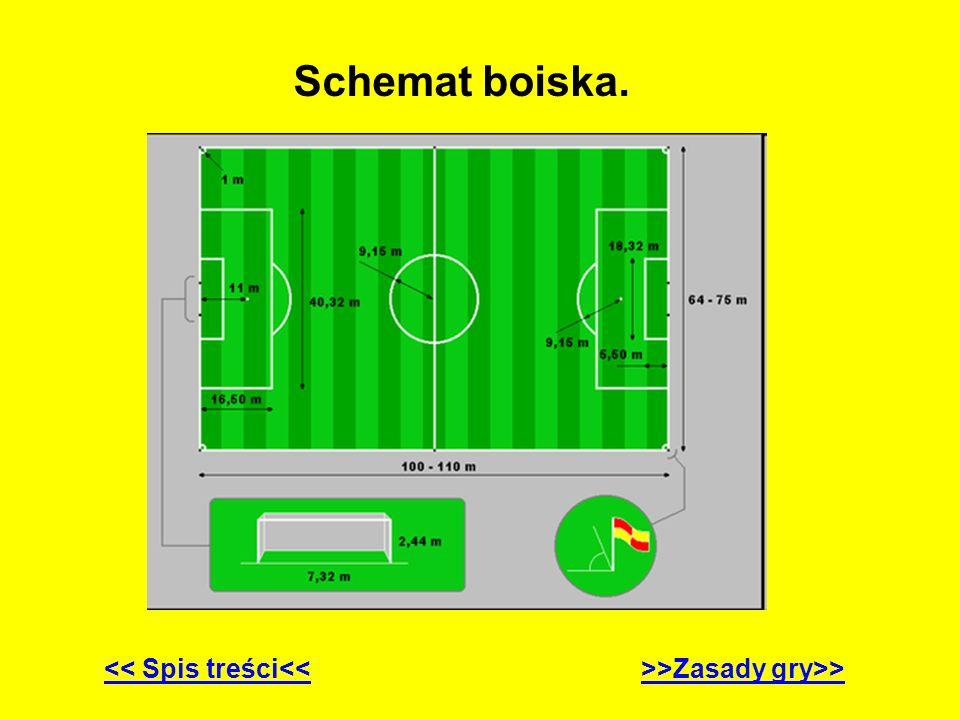 Zasady gry.1. Piłka oraz boisko.