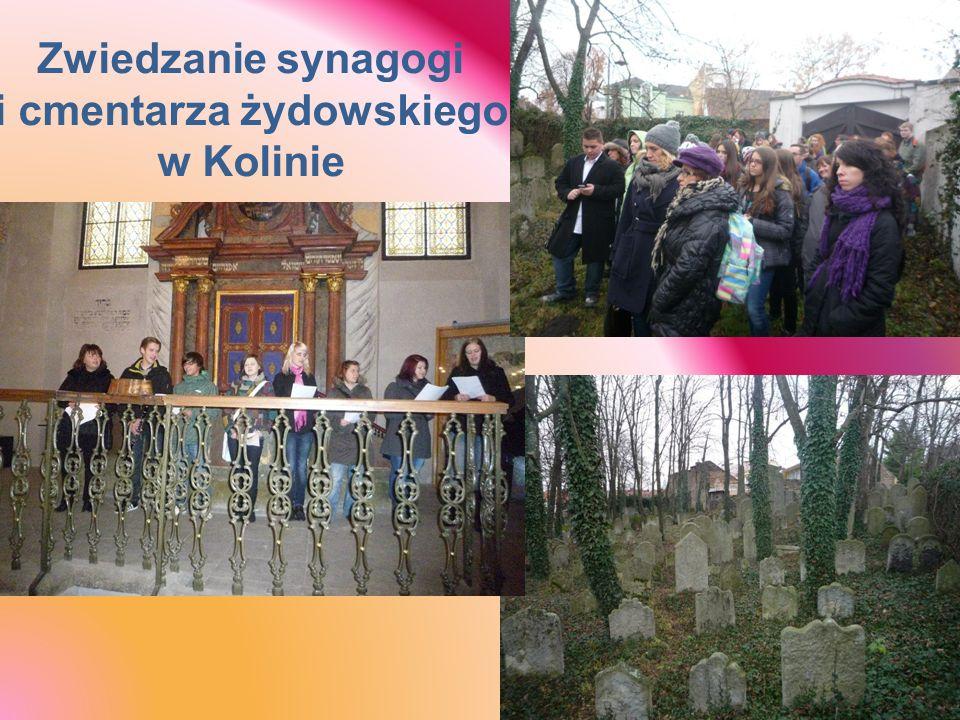 Zwiedzanie synagogi i cmentarza żydowskiego w Kolinie