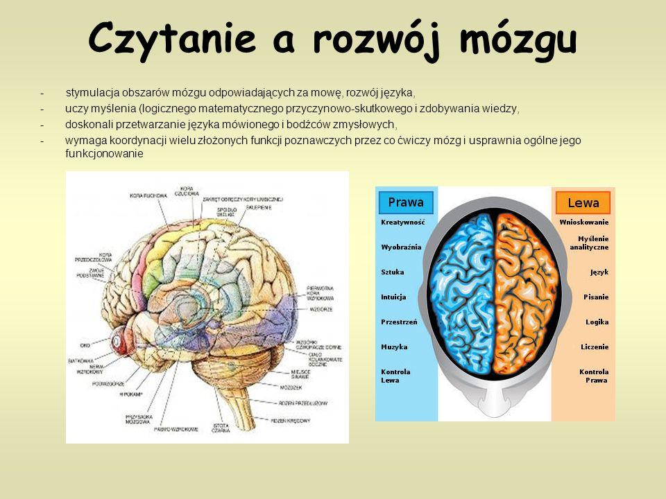 Czytanie a rozwój mózgu - stymulacja obszarów mózgu odpowiadających za mowę, rozwój języka, -uczy myślenia (logicznego matematycznego przyczynowo-skutkowego i zdobywania wiedzy, -doskonali przetwarzanie języka mówionego i bodźców zmysłowych, -wymaga koordynacji wielu złożonych funkcji poznawczych przez co ćwiczy mózg i usprawnia ogólne jego funkcjonowanie