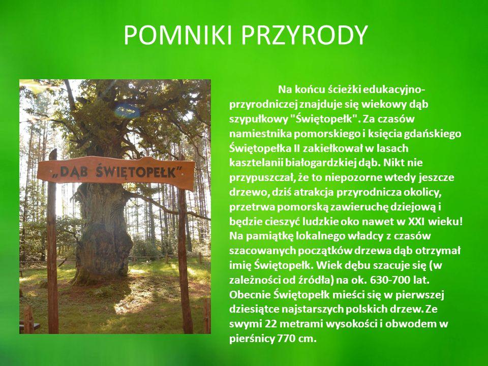 """PRACE PLASTYCZNE """"PATYCZAKI Nadleśnictwo Cewice postanowiło w bieżącym roku szkolnym zorganizować konkurs na najlepszego patyczaka."""