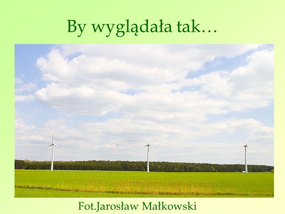 By wyglądała tak… Fot.Jarosław Małkowski