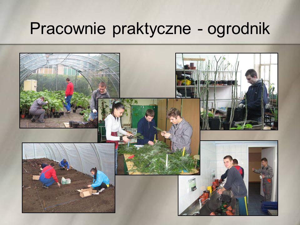 Pracownie praktyczne - ogrodnik