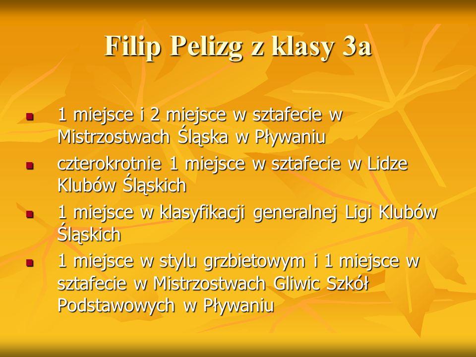 Filip Pelizg z klasy 3a 1 miejsce i 2 miejsce w sztafecie w Mistrzostwach Śląska w Pływaniu 1 miejsce i 2 miejsce w sztafecie w Mistrzostwach Śląska w