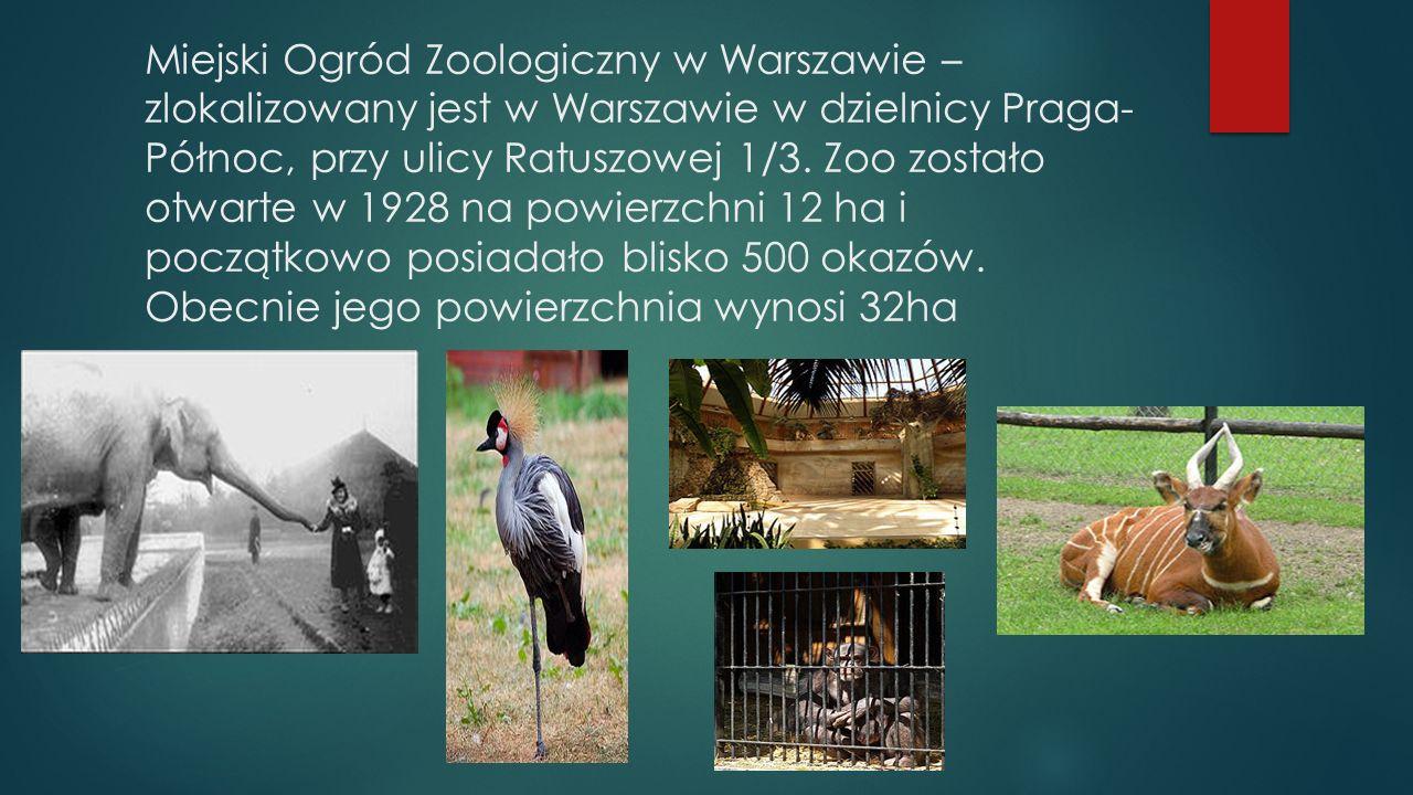 Miejski Ogród Zoologiczny w Warszawie – zlokalizowany jest w Warszawie w dzielnicy Praga- Północ, przy ulicy Ratuszowej 1/3.