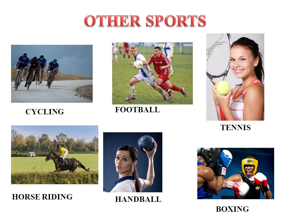CYCLING HORSE RIDING TENNIS FOOTBALL HANDBALL BOXING