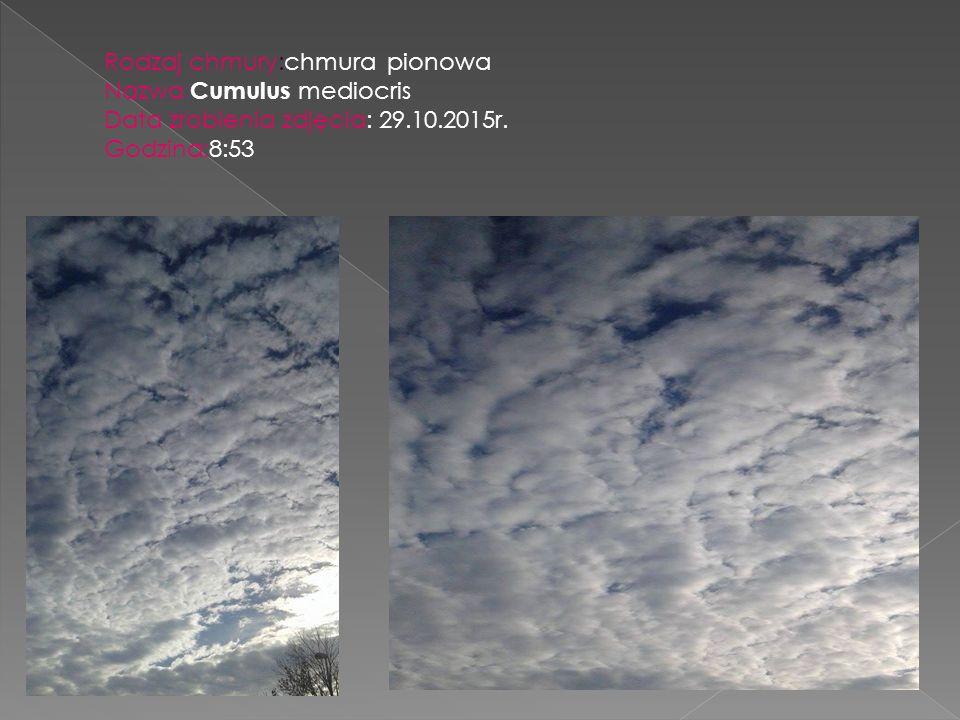 Rodzaj chmury:chmura pionowa Nazwa: Cumulus mediocris Data zrobienia zdjęcia: 29.10.2015r. Godzina:8:53