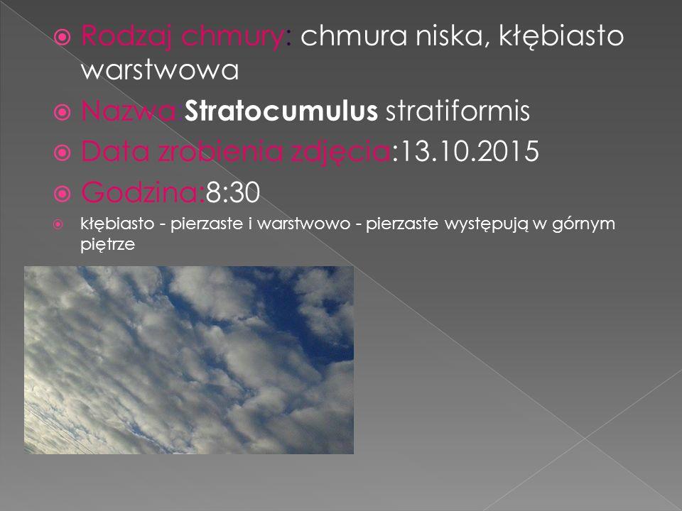  Rodzaj chmury: chmura niska, kłębiasto warstwowa  Nazwa: Stratocumulus stratiformis  Data zrobienia zdjęcia:13.10.2015  Godzina:8:30  kłębiasto