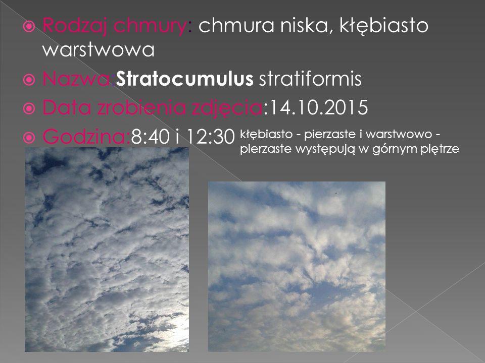  Rodzaj chmury: chmura niska, kłębiasto warstwowa  Nazwa: Stratocumulus stratiformis  Data zrobienia zdjęcia:14.10.2015  Godzina:8:40 i 12:30 kłębiasto - pierzaste i warstwowo - pierzaste występują w górnym piętrze