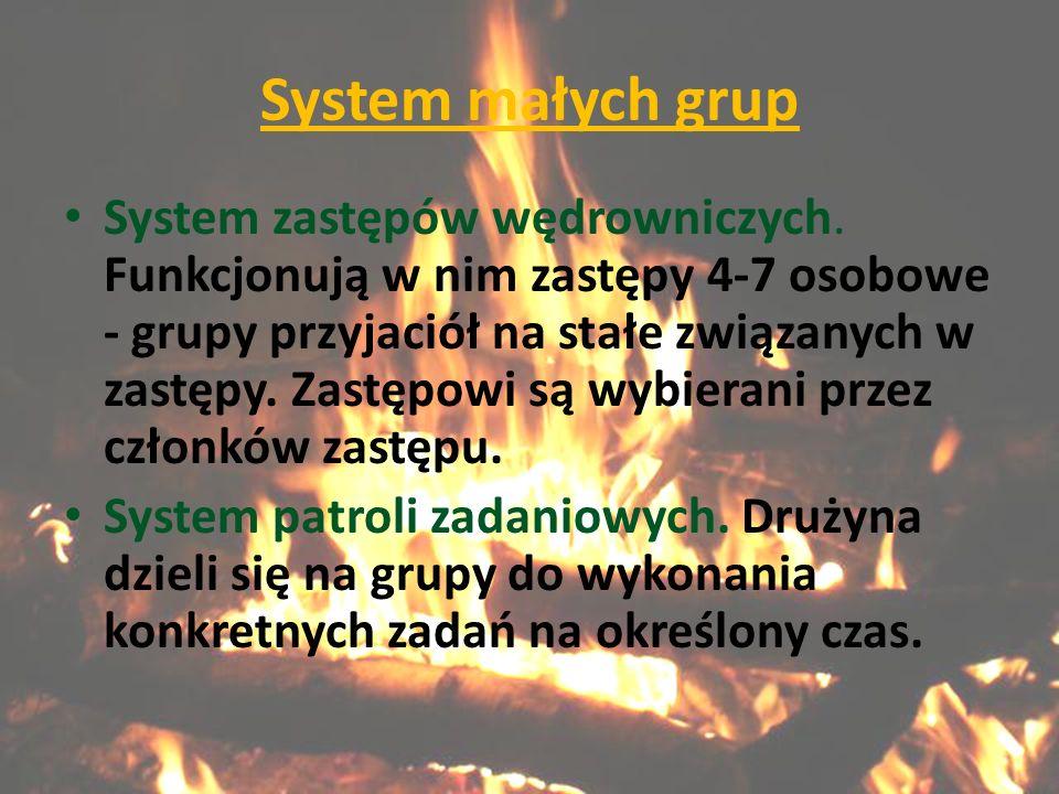 System małych grup System zastępów wędrowniczych.