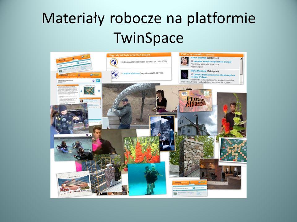 Materiały robocze na platformie TwinSpace