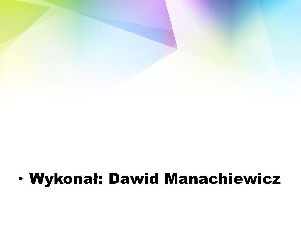 Wykonał: Dawid Manachiewicz