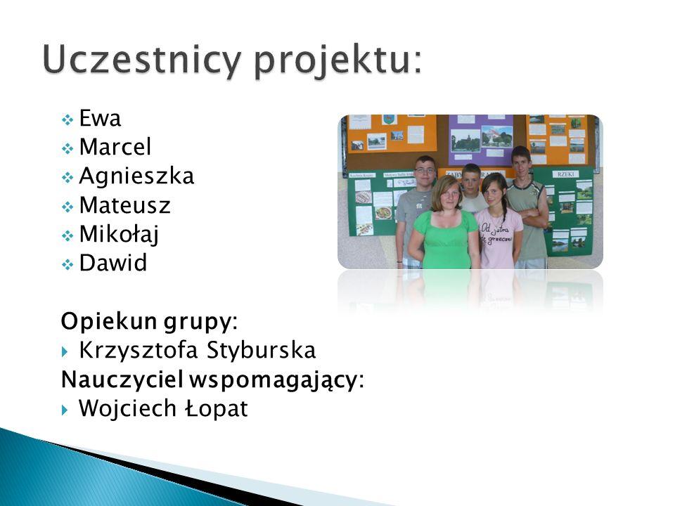 Termin realizacjiZadanie 30.03.-01.04.2011 Wybór tematu, określenie celów projektu i zaplanowanie etapów jego realizacji.