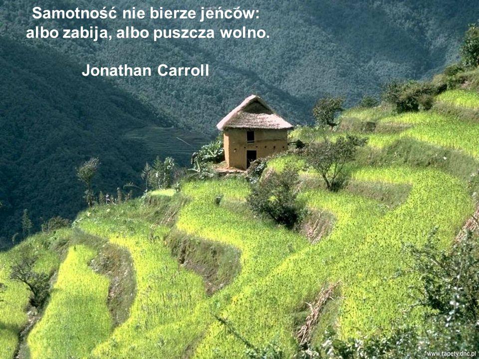 Samotność jest ciężkim i nieodzownym warunkiem istnienia. Joseph Conrad