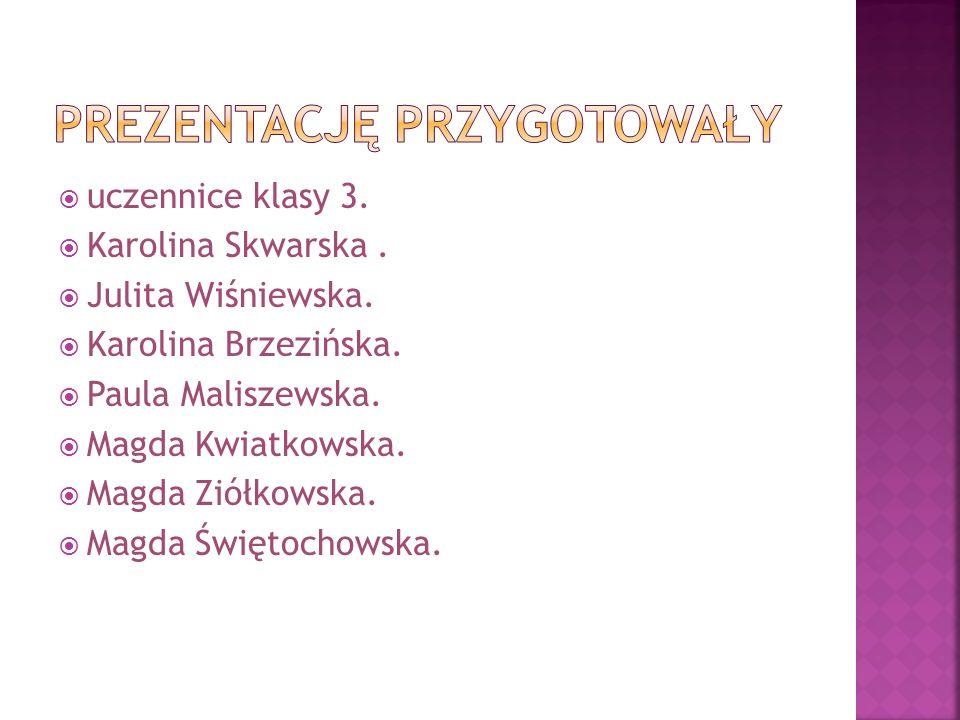  uczennice klasy 3.  Karolina Skwarska.  Julita Wiśniewska.  Karolina Brzezińska.  Paula Maliszewska.  Magda Kwiatkowska.  Magda Ziółkowska. 