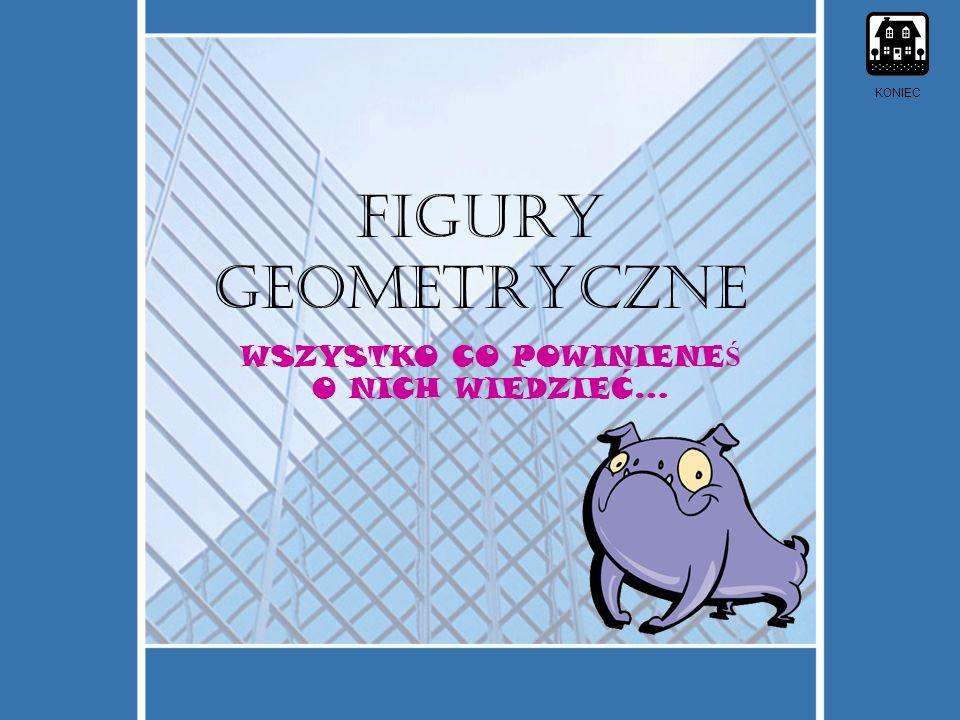 FIGURY geometryczne WSZYSTKO CO POWINIENE Ś O NICH WIEDZIEĆ… KONIEC