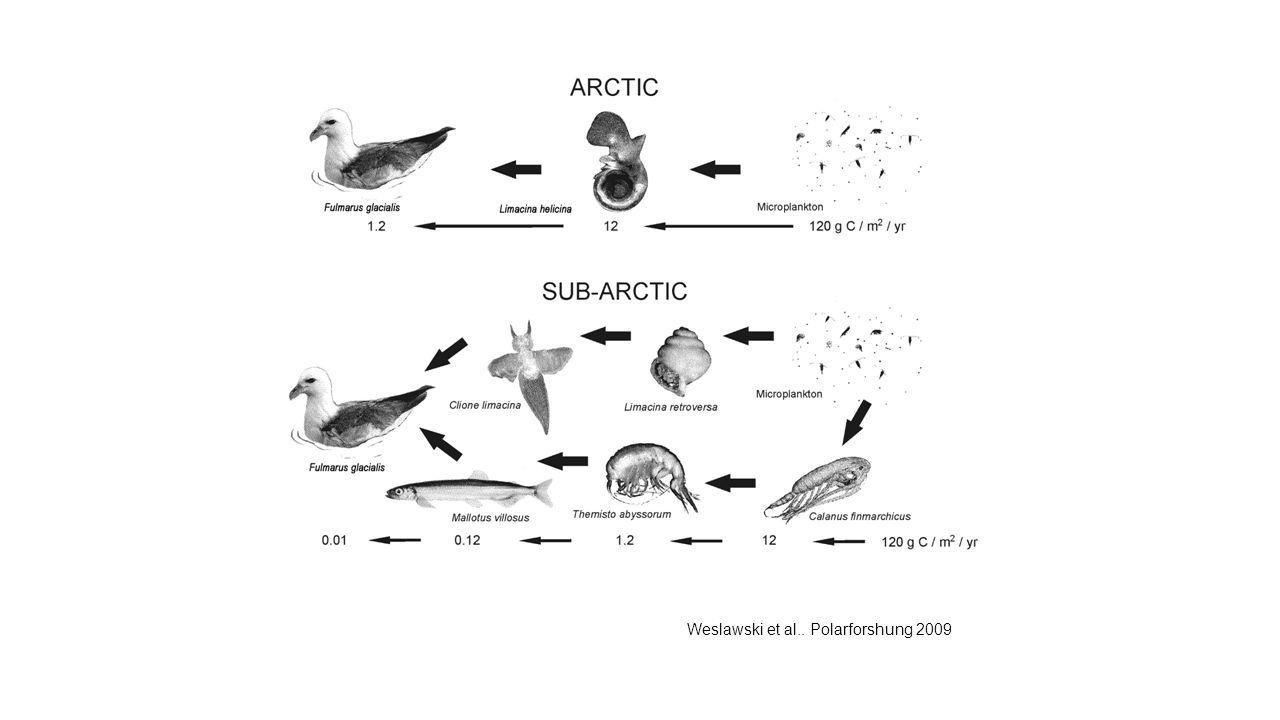 Weslawski et al.. Polarforshung 2009