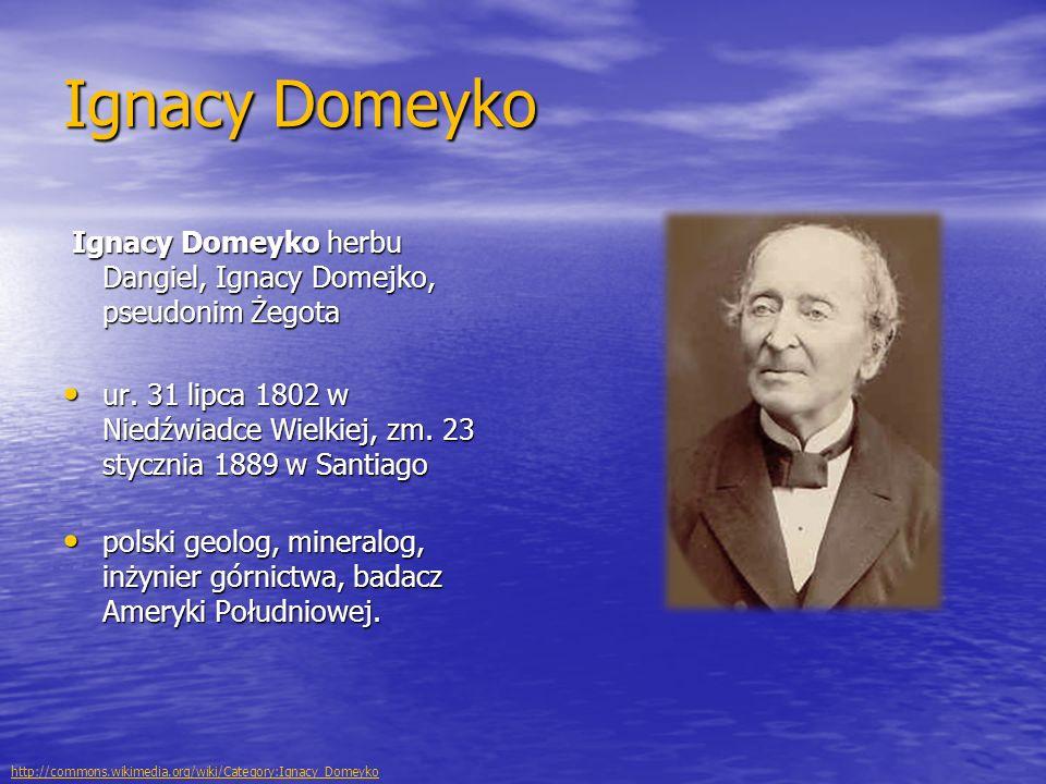 Ignacy Domeyko Ignacy Domeyko herbu Dangiel, Ignacy Domejko, pseudonim Żegota Ignacy Domeyko herbu Dangiel, Ignacy Domejko, pseudonim Żegota ur. 31 li