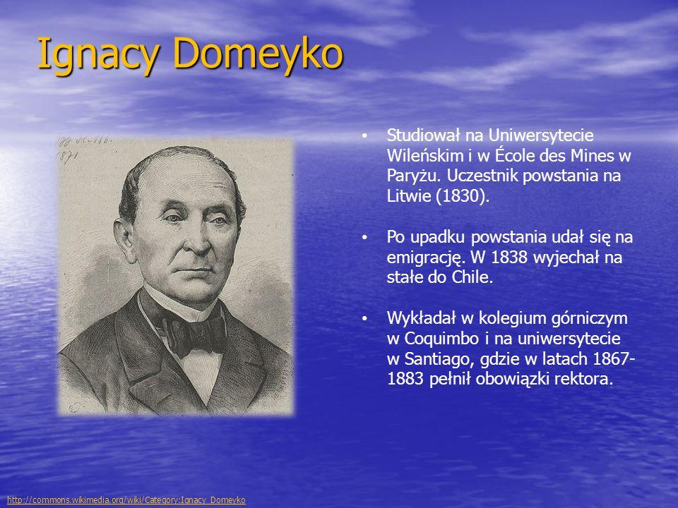 Ignacy Domeyko Studiował na Uniwersytecie Wileńskim i w École des Mines w Paryżu. Uczestnik powstania na Litwie (1830). Po upadku powstania udał się n