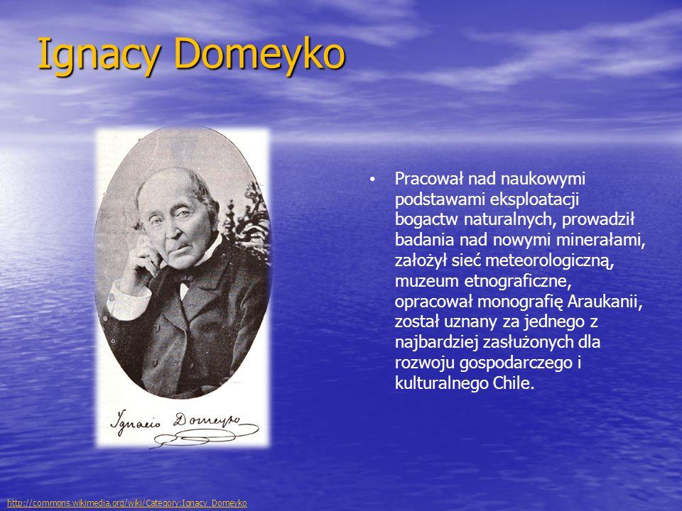 Ignacy Domeyko Pracował nad naukowymi podstawami eksploatacji bogactw naturalnych, prowadził badania nad nowymi minerałami, założył sieć meteorologiczną, muzeum etnograficzne, opracował monografię Araukanii, został uznany za jednego z najbardziej zasłużonych dla rozwoju gospodarczego i kulturalnego Chile.