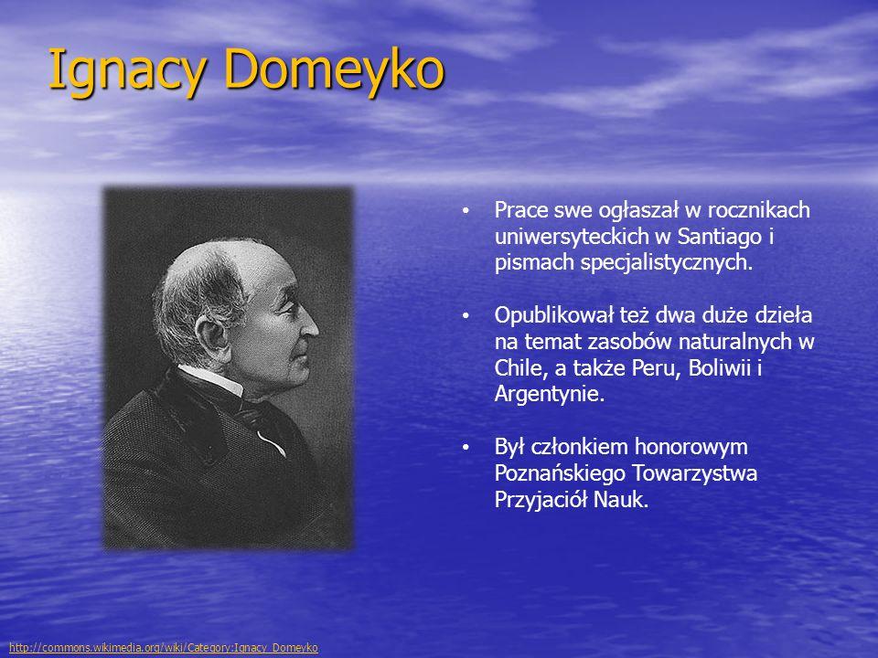 Ignacy Domeyko Prace swe ogłaszał w rocznikach uniwersyteckich w Santiago i pismach specjalistycznych. Opublikował też dwa duże dzieła na temat zasobó