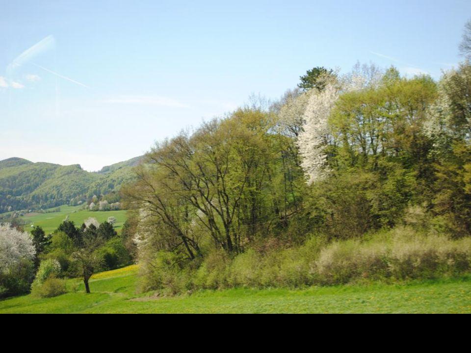 Krajobrazy Dolnej Austrii z okna jadącego autobusu.
