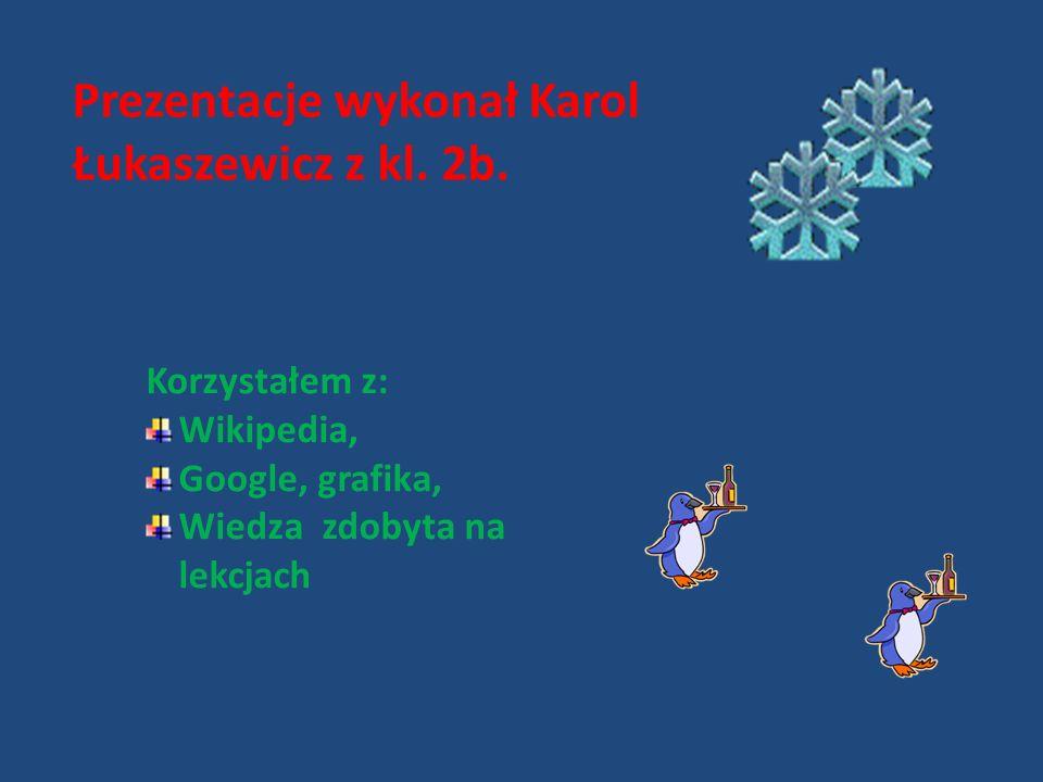 Prezentacje wykonał Karol Łukaszewicz z kl.2b.