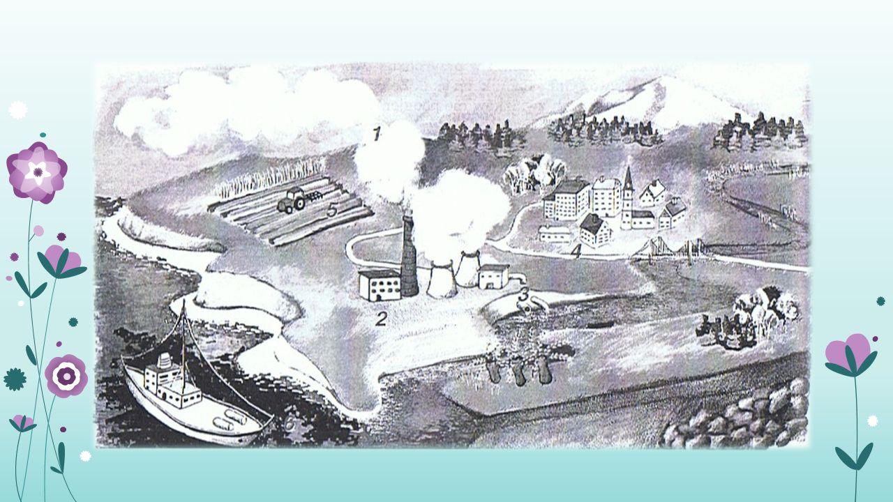 Skutki zanieczyszczenia wód dla środowiska