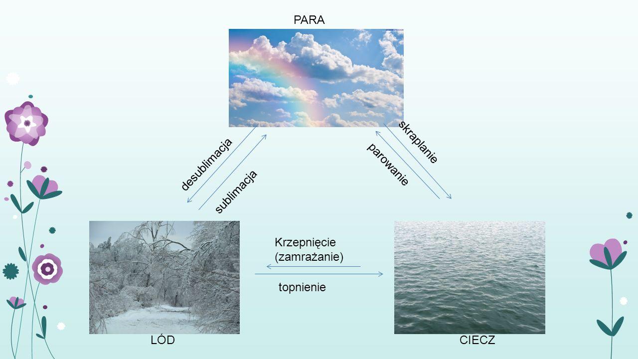 Woda w przyrodzie Woda w stałym stanie skupienia Woda atmosfery czna jako składnik powietrza Woda pochłonięta przez substancje Woda krystalizac -yjna w minerałach Woda jako składnik organiz- mów Woda morska Woda z rzek i jezior Wody mineralne Wody gruntowe i podziene