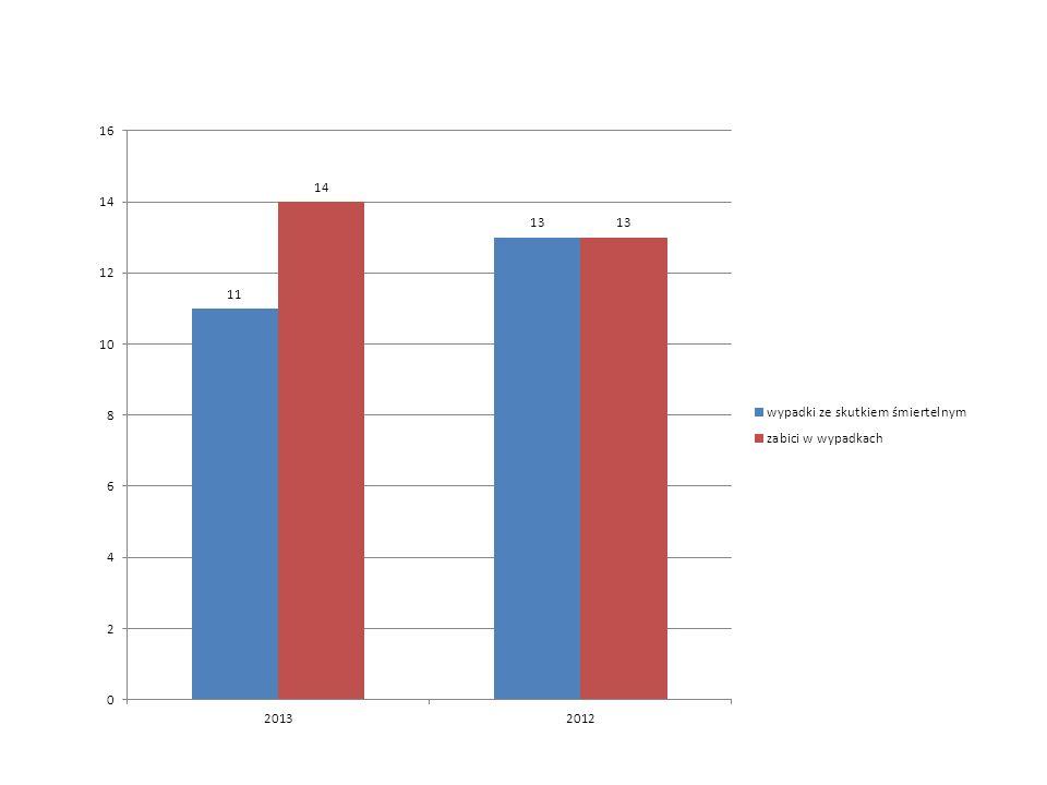 Najczęstsze przyczyny wypadk ó w z winy kierującego: niedostosowanie prędkość do warunk ó w ruchu – 27 tj.