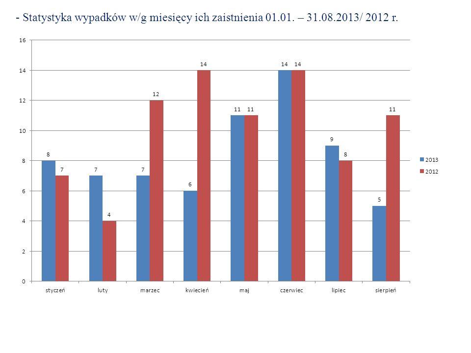 Miejsca szczególnie niebezpieczne w 2013 roku: 4).