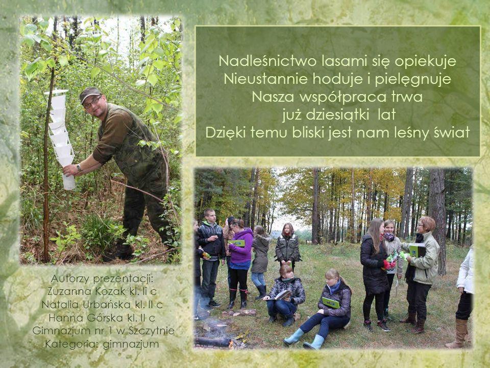 Nadleśnictwo lasami się opiekuje Nieustannie hoduje i pielęgnuje Nasza współpraca trwa już dziesiątki lat Dzięki temu bliski jest nam leśny świat Autorzy prezentacji: Zuzanna Kozak kl.