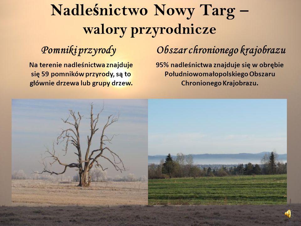 Nadle ś nictwo Nowy Targ – walory przyrodnicze Pomniki przyrodyObszar chronionego krajobrazu 95% nadleśnictwa znajduje się w obrębie Południowomałopolskiego Obszaru Chronionego Krajobrazu.