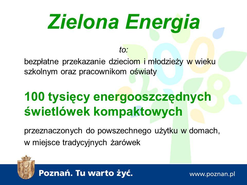 """Książeczka dla dzieci """"EkoMisio i jego klimatyczne przygody - Ecofys Polska (12.500 egz.)"""